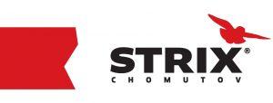 logo Strix